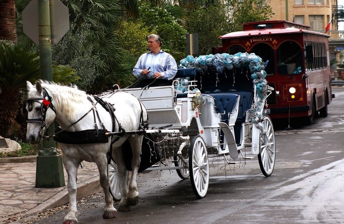 An image of a horse drawn carriage