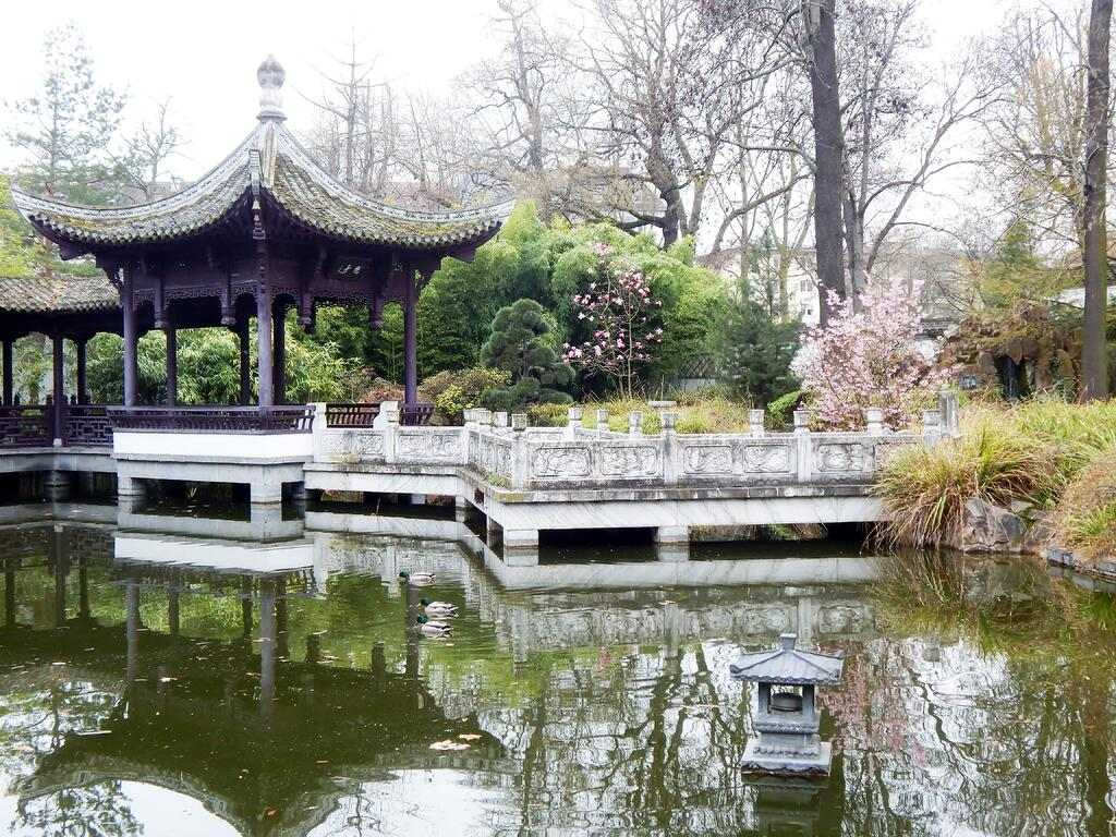 Image of the Chinese Garden