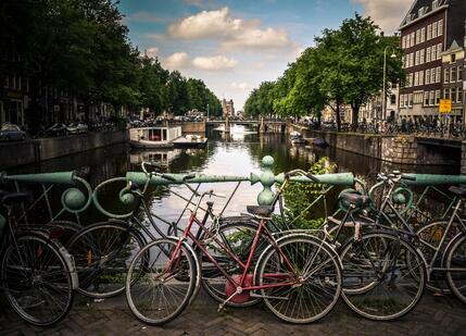 Image of bikes in Amsterdam, the primary form of transportation