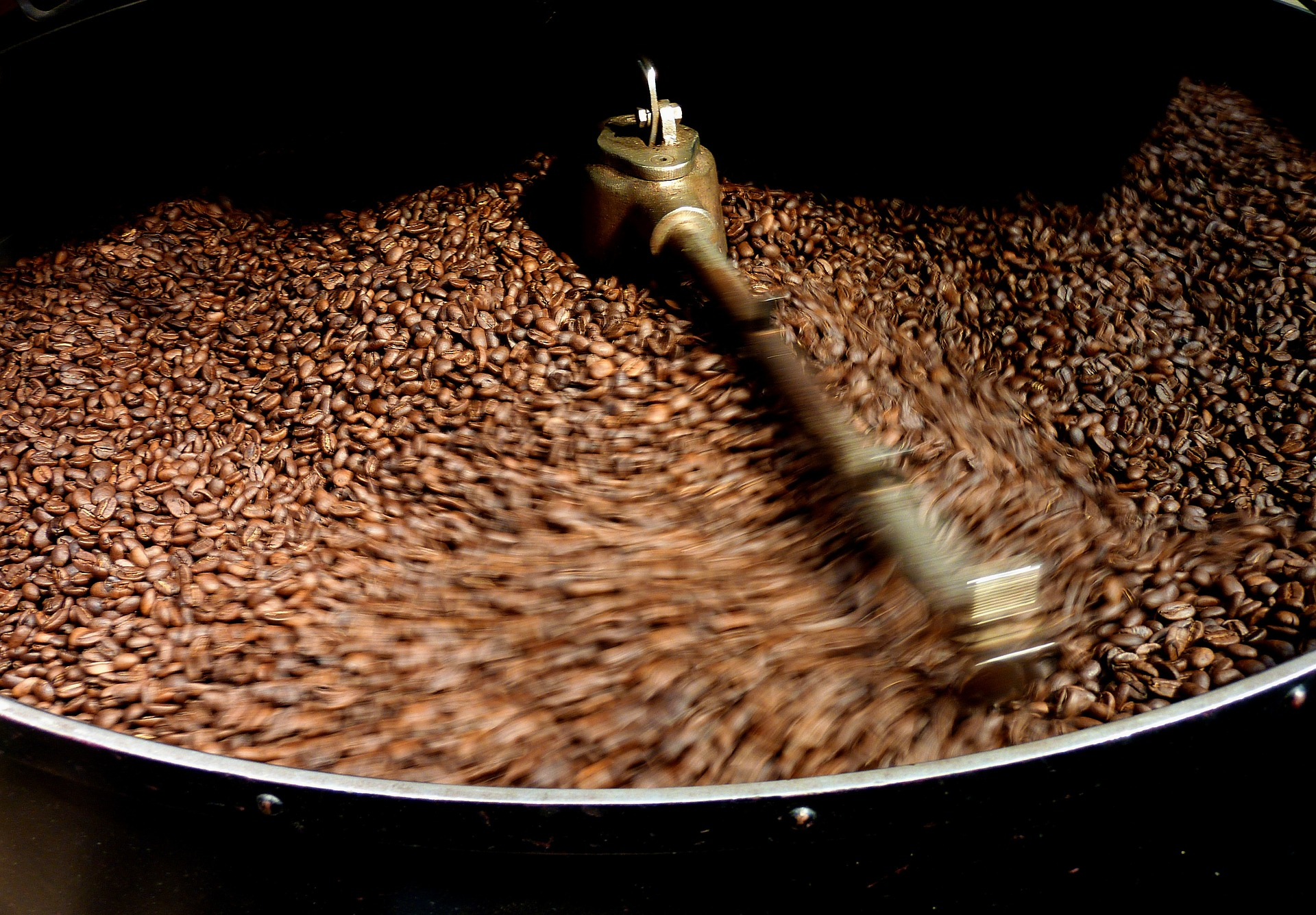Image of coffee beans in Costa Rica