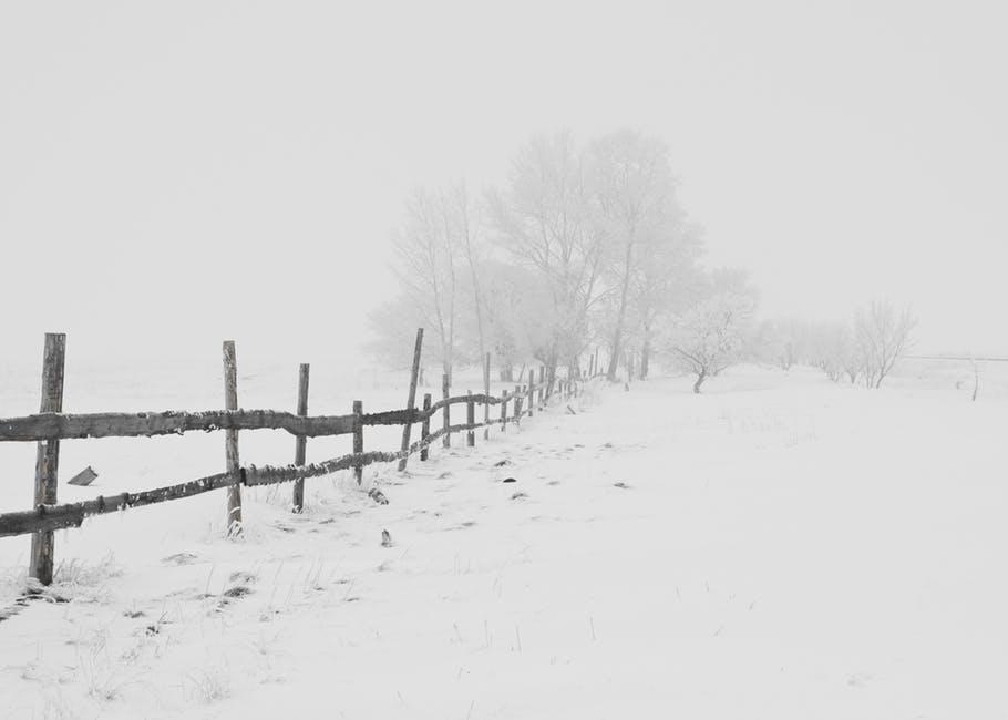 Image of winter farm land
