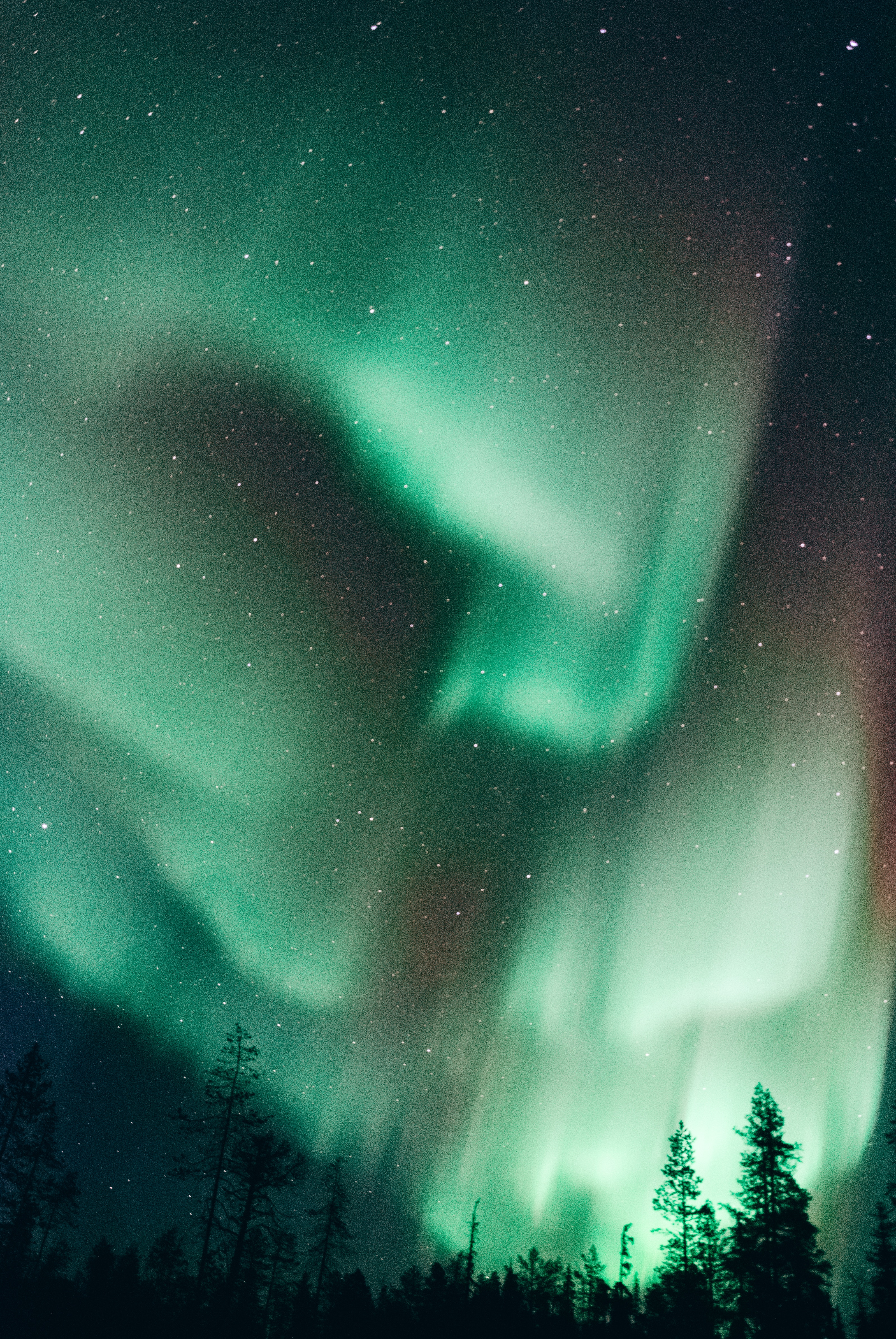 Image of the Northern Lights glowing green in Finland