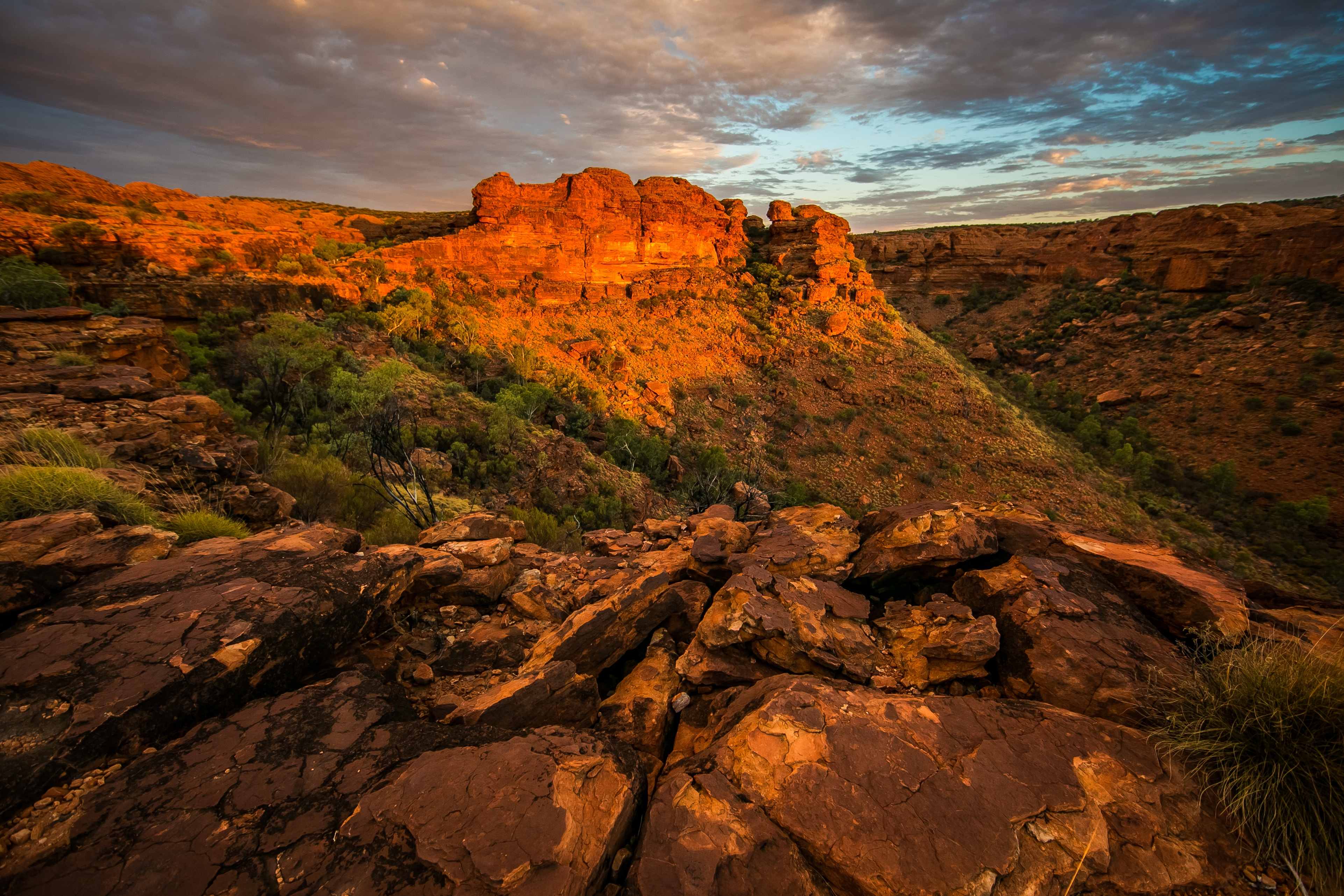 Image of the Australian Outback